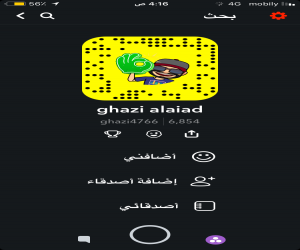 ghazi alaiad