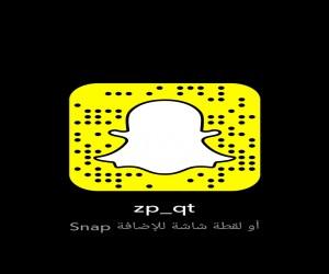 zp_qt